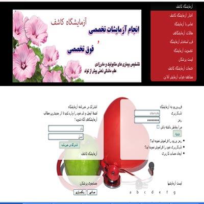 طراحی سایت آزمایشگاه کاشف